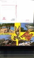 560625,Mehrbild Ak Spain Mallorca Cala Ferrera Cala D Or Esel - Spanien