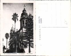 558989,Spain La Laguna Tenerife Teneriffa La Catedrale Palmen - Spanien