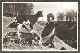 Carte P ( La Chèvre ) - Animaux & Faune