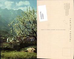 558987,Spain Montserrat La Montana Desde Monistrol Baumblüte - Spanien