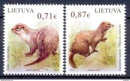 LITOUWEN (OEU 382) - Lithuania