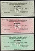 YOUGOSLAVIE: Lot De 3 Billets De Stabilisation Du Royaume De Yougoslavie: 2F Or, 5F Or, 20F Or................. - Yugoslavia