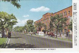 Sapporo City - Kitaichijidori Street - Japan