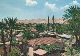 Jordan Jericho - City Of Palms 1964 - Jordanien