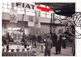 Originele Zwart-wit Foto Tractor Photo Tracteur FIAT 55R - Luminor 8230 - Jaren 1960 - Cars