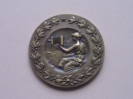 JEUGDWEDSTRIJD DIACLUB L.S.A. Reet 1981 - Medaille Uitgereikt  Staatssecretaris H. De Backer ( Detail : Zie Foto's ) ! - Photographie
