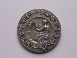 "DIAWEDSTRIJD "" De Mens "" Diaclub L.S.A. Reet 1982 - Medaille Uitgereikt Gemeenschapsminister K. POMA ( Zie Foto's ) ! - Photographie"