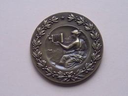 """ PORTRET "" Diaclub L.S.A. Reet 1983 - Medaille Uitgereikt Gemeenschapsminister K. POMA ( Zie Foto's ) ! - Fotografie En Filmapparatuur"