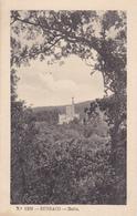 Portugal  Bussaco - Coimbra