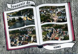 Souvenir De VESINES (C4155) - France