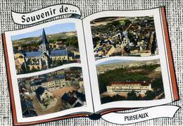 Souvenir De PUISEAUX (1219) - Puiseaux