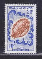 WALLIS ET FUTUNA N°  167 ** MNH Neuf Sans Charnière, TB (D6002) Faune, Coquillage - Wallis-Et-Futuna