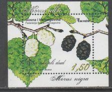 BOSNIA,  2017,MNH, FLORA, MULBERRY, TREES, S/SHEET - Fruit