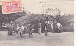 CPA SENEGAL FATICK Boeufs Dressés à La Faucheuse Paysans Agriculture - Senegal