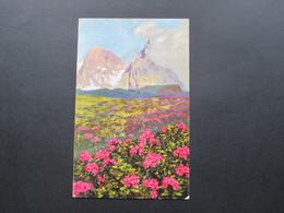 AK Österreich 1925 Rhododendron Ferrugineum. Berlglandschaft. Sonderstempel Insbruck. - Blumen