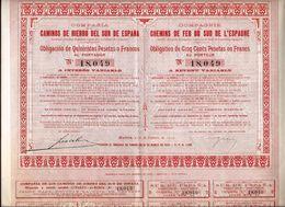 Compañía De Los Caminos De Hierro Del Sur De España - Chemin De Fer & Tramway