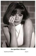 JACQUELINE BISSET - Film Star Pin Up PHOTO POSTCARD - 205-75 Swiftsure Postcard - Unclassified