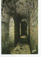 CP VERDUN Et Les Champs De Bataille - Fort De Douaumont - Galerie D'accès Au Poste De Commandement - Douaumont