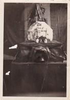 """GRADISCA - GORIZIA - FESTA DEL 17° REGGIMENTO FANTERIA """"ACQUI"""" - FOTO DEL 1935 - Lieux"""
