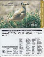 U.A.E. - Bird, Cream-coloured Courser(reverse 4), Etisalat Prepaid Card Dhs 30, Used - United Arab Emirates