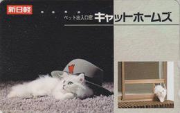 Télécarte Japon / 110-011 - ANIMAL - CHAT - CAT Japan Phonecard  - KATZE - GATO - GATTO - 4068 - Cats