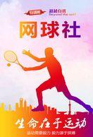 [ T26-042   ]   Tennis Ball Pelota De Tenis   , China Pre-stamped Card, Postal Stationery - Tennis