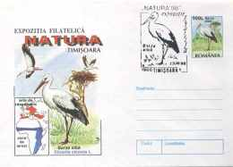 5168  Cigogne: PAP + Oblit. Temp. Roumanie, 1998 -  Stork  Postal Stationery Cover With Sp. Cancel - Storchenvögel