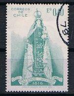 Chili Y/T 353 (0) - Chili