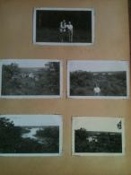 Photo - Cameroun 1952 - Route Sud Douala-Edéa, Plantation De La Dizangué, Lac Ossa, 5 Photographies - Africa