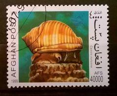 FRANCOBOLLI STAMPS AFGHANISTAN 1999 SERIE FAUNA MOLLUSCHI - Afghanistan