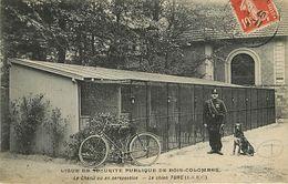 92 Bois Colombes - Ligue De Sécurité Publique - Le Chien Turc - France