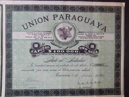 1  Titule  UNION   Paraguaya   100 Pesos OR 1920 + Coupons - Shareholdings