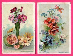 2 Cp - Fleurs - Marguerites & Primevères - Coquelicots & Bleuets - 1905 - 1904 - Blumen