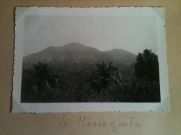 Photo - Cameroun 1953 - Le Mont Manengouba, Route Bonabéri-Nkongsamba - Africa