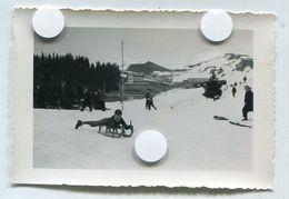 CHAMROUSSE 1953 50s Isère 38 Station Ski Luge LOT 3 Photos Id Dos Garçon - Places