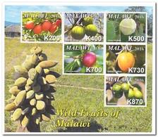 Malawi 2017, Postfris MNH, Fruit - Malawi (1964-...)