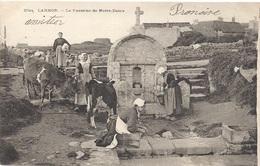 56 MORBIHAN - LARMOR La Fontaine De Notre-Dame, Pionnière En Breton - Larmor-Plage