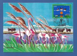 Frankreich  1999  Mi.Nr. 3382 , EUROPA CEPT - Natur-und Nationalparks - Maximum Karte - Strasbourg 24.04.1999 - Europa-CEPT