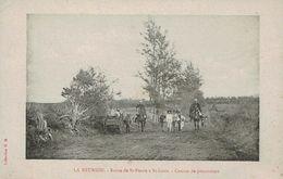 LA REUNION - Route De St-PIERRE à St-LOUIS - Convoi De Prisonniers - Saint Pierre