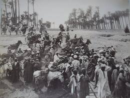 Grande PHOTO De 1899 (en EGYPTE) @ L'embarcadère Pour SAQQARAH (station Daniers à Badrechines) G Lékégian & Cie N° 69 - Africa