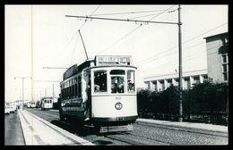 LISBOA - ELECTRICOS -  Carte Postale - Lisboa