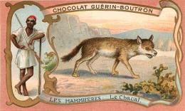 CHROMO GUERIN BOUTRON  IMP.  HEROLD  LE CHACAL - Guerin Boutron