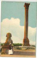 S6925 - Alexandrie - Colonne Pompée Et Sphinx - Alexandrie