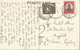 6Rm-656: 2d Postage Due /  Dawings From The Beach 1954 - Strafportzegels