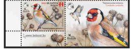 Belarus 2018 Bird Of The Year. European Goldfinch 1 Stamp + Coupon Weißrussland - Belarus