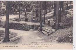 88 SAINT DIE A La Fontaine Abiès - Saint Die