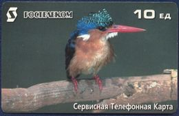 RUSSIA - RUSSIE - RUSSLAND - RUSIA ROSTELECOM PRE-PAID CARD 10 UNITS FAUNA BIRD KINGFISHER GOOD CONDITION - Russia