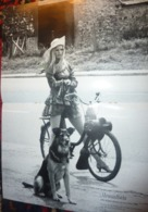 Brigitte Bardot SOLEX VELOSOLEX Carte Postale BROMFIETS 60 JAAR Postcard - Culture