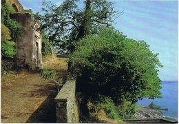 Acireale-Via Tocco-Edicola Votiva-Chiazzette-S.Maria La Scala- - Acireale