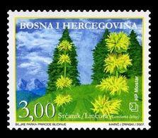 Bosnia And Herzegovina (Croatian) 2007 Mih. 219 Flora. Flowers. Great Yellow Gentian MNH ** - Bosnia Erzegovina